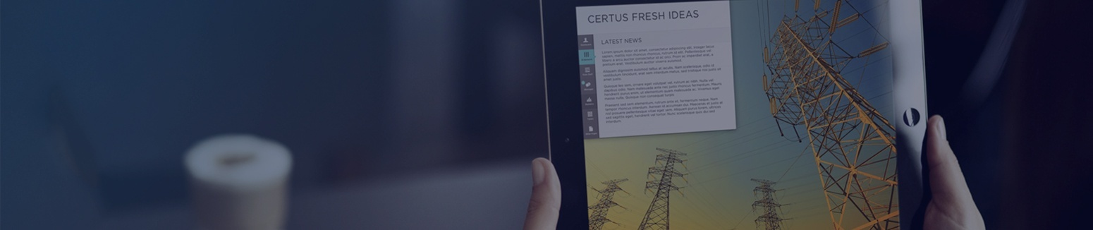 CERTUS-WEBSITE-_SERVICES-BUSINESS-ANALYSIS.jpg